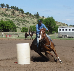 Riding with feel makes your horse's job easier.