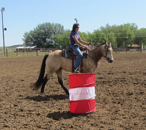 Lisa is in the rate position, making contact with the reins.