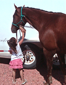 Provide supervision to children, and education to horses.