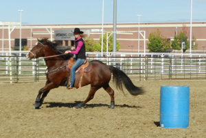 Do you have elevation and hind end engagement even at speed?