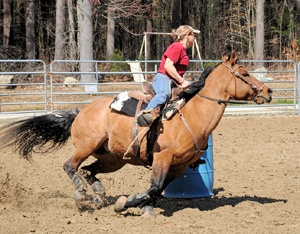 Does your horse need more training or more ability?