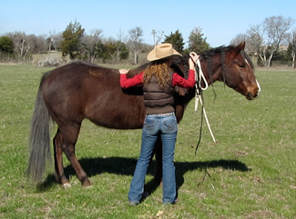 Use your halter as a massage tool.