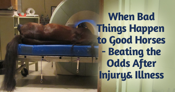 When Bad Things Happen to Good Barrel Horses – Beating the Odds After Injury & Illness