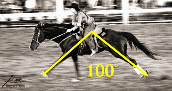 How to Improve Your Barrel Horse's Topline AND Times!