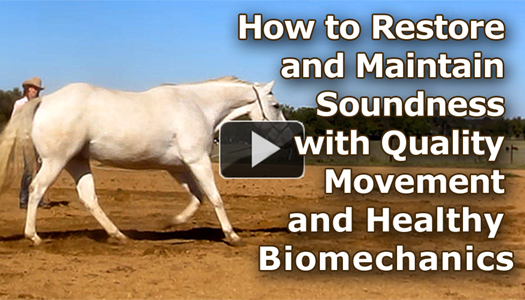 How to Restore and Maintain Soundness with Quality Movement and Healthy Biomechanics