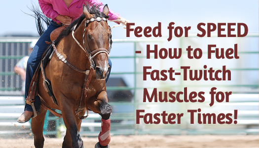 Feed for SPEED - How to Fuel Fast-Twitch Muscles for Faster Times!