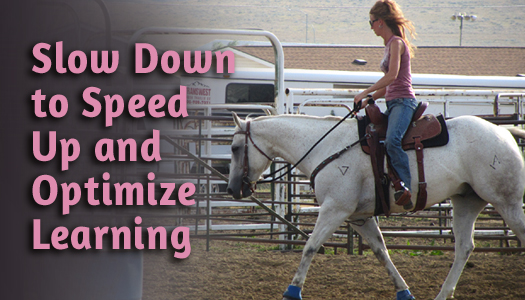 Slow Down to Speed Up and Optimize Learning