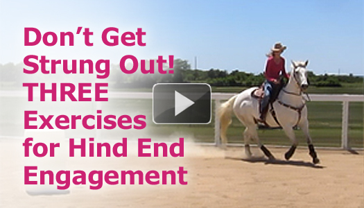 Don't Get Strung Out!  Three Exercises for Hind End Engagement