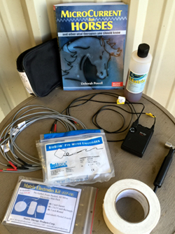 MicroPlus Equine Kit set up and ready for treatment!