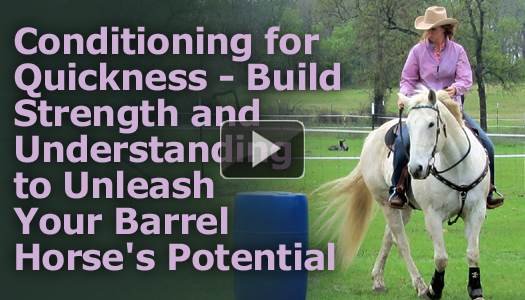 Conditioning for Quickness – Build Strength and Understanding to Unleash Your Barrel Horse's Potential