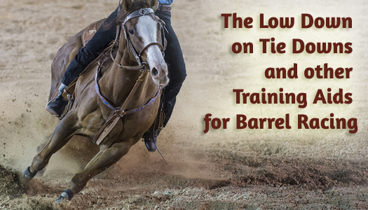 The Low Down on Tie Downs and other Training Aids for Barrel Racing