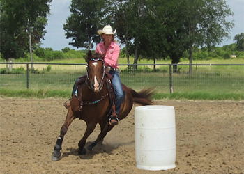 Will the balanced barrel horse please stand UP!?