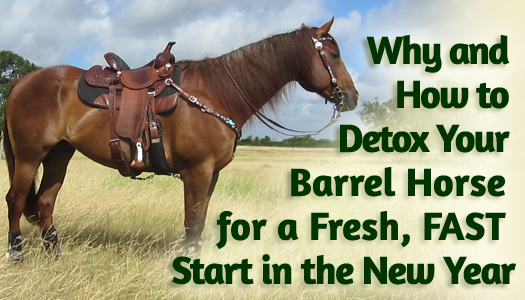 Why and How to Detox Your Barrel Horse for a Fresh, FAST Start in the New Year