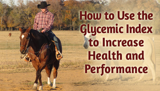 How to Use the Glycemic Index to Increase Health and Performance