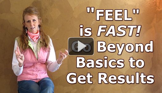 FEEL is Fast!  Go Beyond the Basics to Get Results