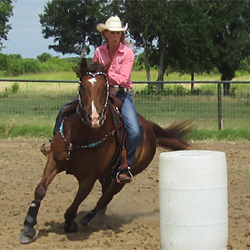 Barrel Racing Tips Pro Membership