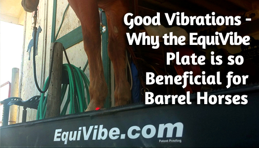 Good Vibrations - Why the EquiVibe Plate is so Beneficial for Barrel Horses
