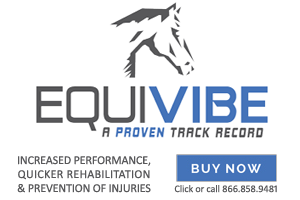 EquiVibe Discount