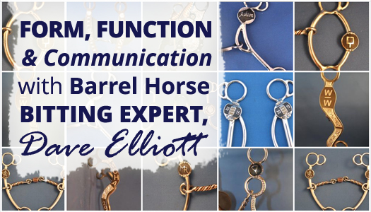 Form, Function & Communication with Barrel Horse Bitting Expert, Dave Elliott
