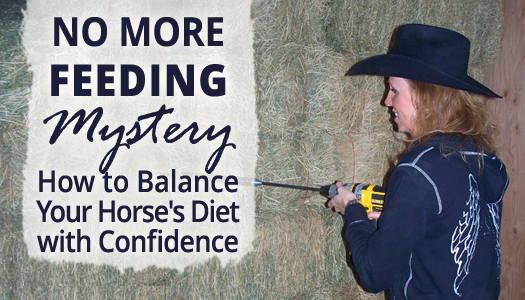 No More Feeding Mystery - How to Balance Your Barrel Horse's Diet with Confidence