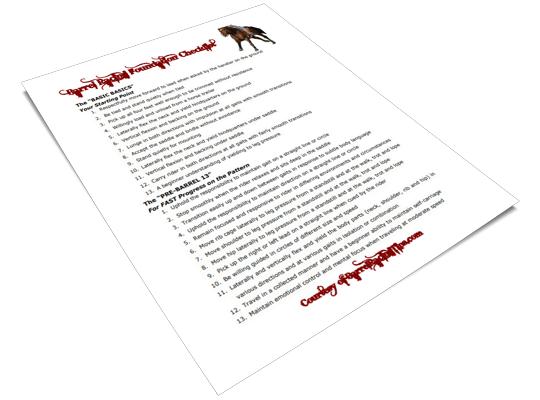 The Barrel Racing Tips Foundation Checklist PDF