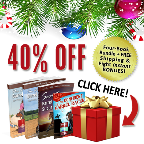 Holiday Book Bundle Sale