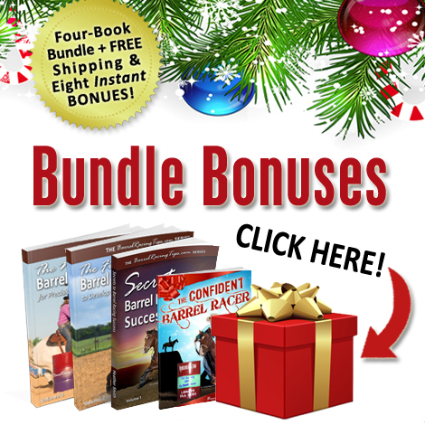 Holiday Book Bundle Sale
