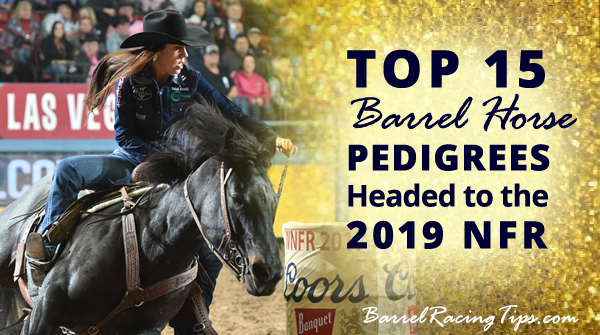 Top 15 Barrel Horse Pedigrees Headed to the 2019 NFR