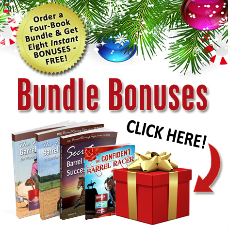 Claim Your Holiday Book Bundle Bonuses